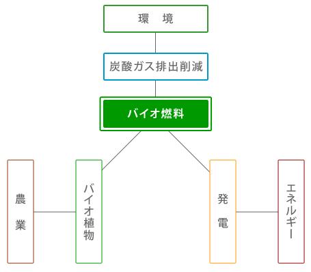 バイオ燃料について バイオ燃料には固体燃料と液体燃料に分けられます。日本では固体燃料として...